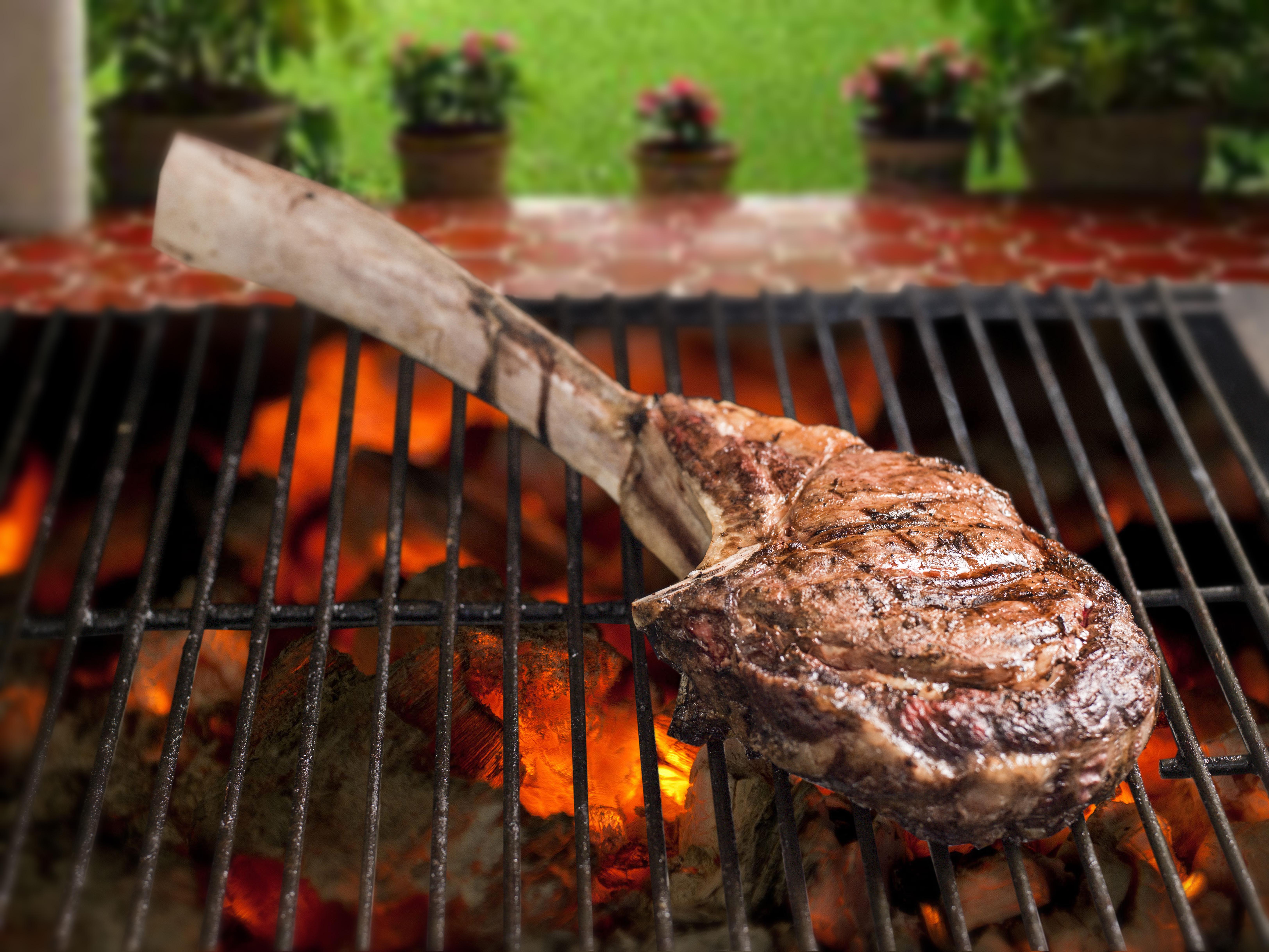 Sugerencias para asar la carne ganader a revuelta con - Parrillas para asar carne ...